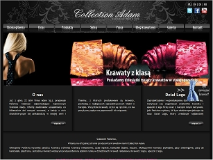 Krawaty marki Collection Adam